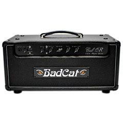 Bad Cat Black Cat Cub 15 Watt USA Player